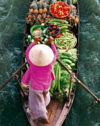 Mekong delta Homestay – Floating market 2 Days