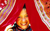 Sapa homestay tour – Bac Ha market 3 Days