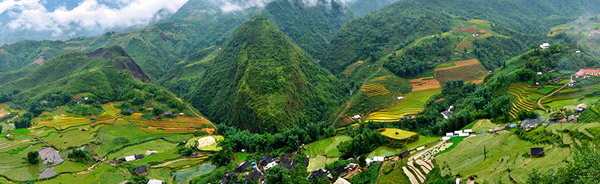Sapa terraced fields the photo subject of all Sapa trekking tours